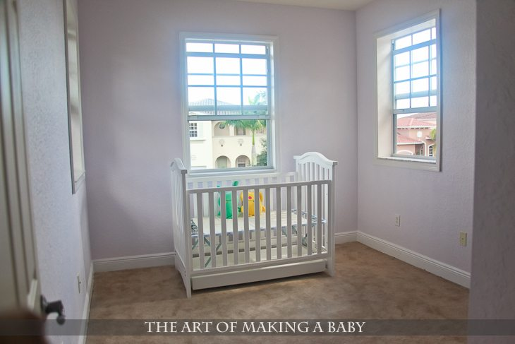 Nursery Update: Part I