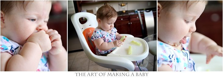 de2c96f94d4c Introduction of Solids  Baby Led Weaning ⋆ EVERY AVENUE LIFE