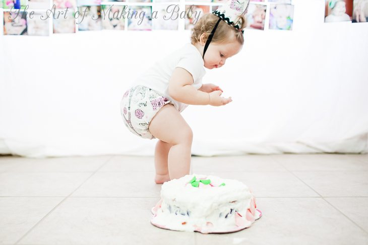 First Birthday Party: Smash Cake