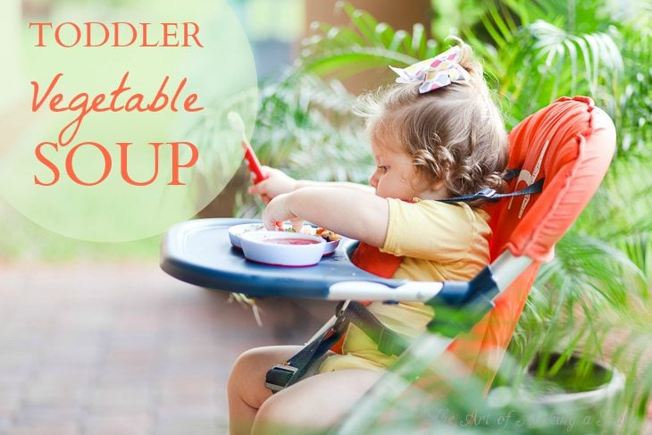 TODDLER VEGGIE SOUP