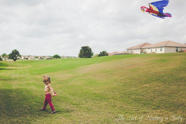 Kite Flying – Week 2 Of 52 Weeks Of Toddler Experiences
