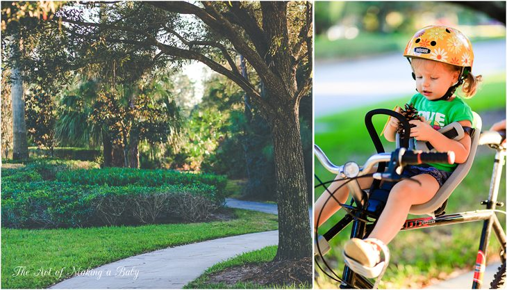 Morning And Evening Bike Rides