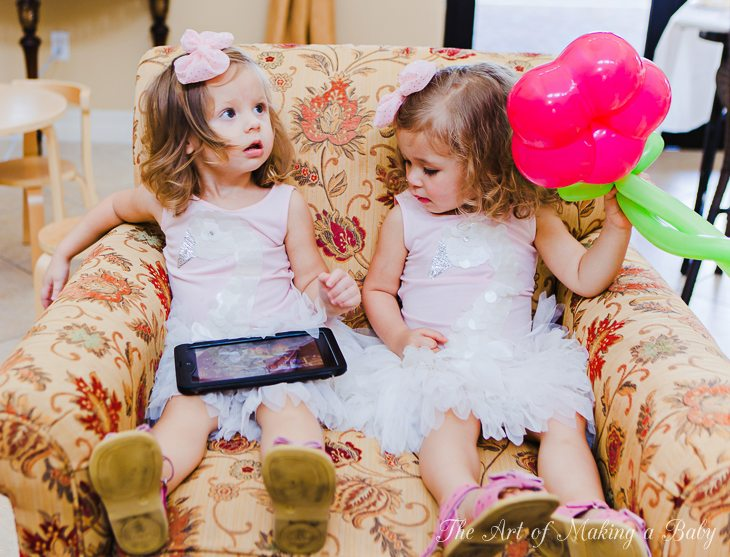 Lexitwins Swan Birthday: Planning, Decor And Party Favors