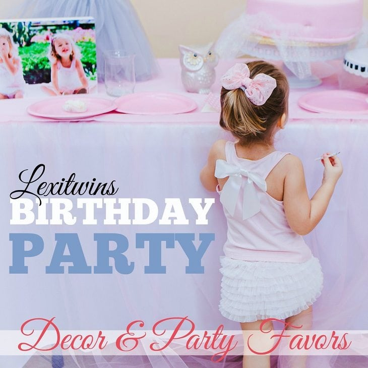 Lexitwins Swan Birthday: Decor and Party Favors