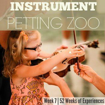 Instrument Petting Zoo – Week 8 Of 52 Weeks Of Experiences