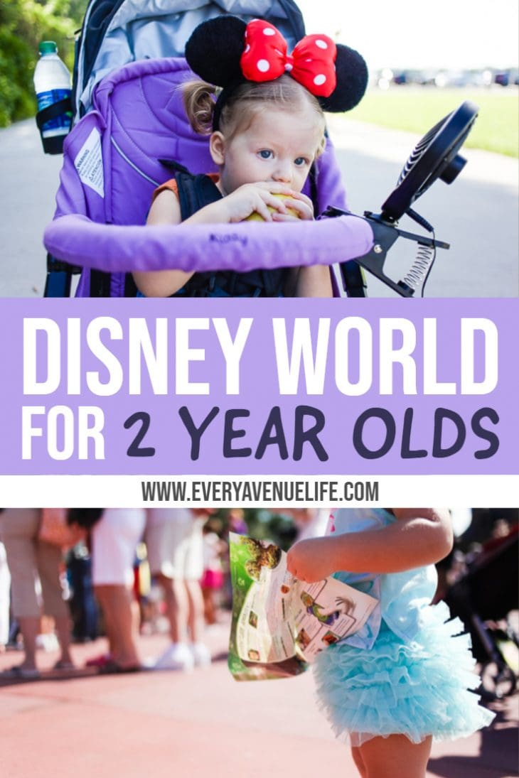 Disney World for 2 Year olds: tips, tricks and must haves