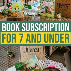 Lillypost, a Fun Book Subscription Box for 7 and Under