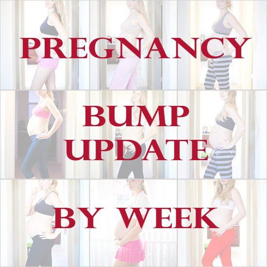 Bump Updates